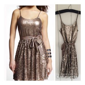Beautiful Express Gold Sequin Party Dress